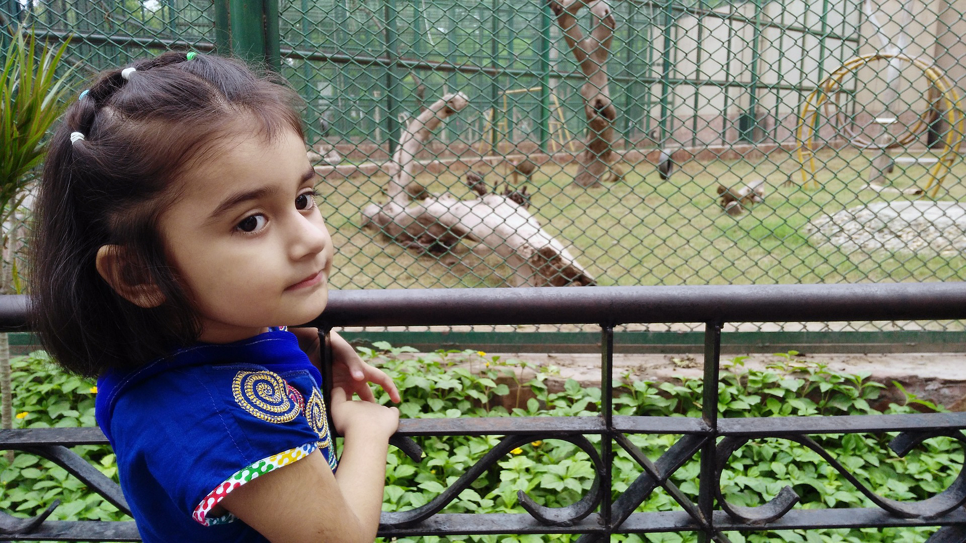 Blue Bird Day and kid at zoo