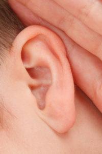 Blue Bird Day hearing senses