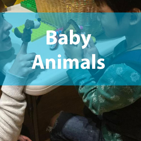 Blue Bird Day and baby animals