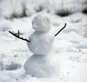Blue Bird Day and snowman blog