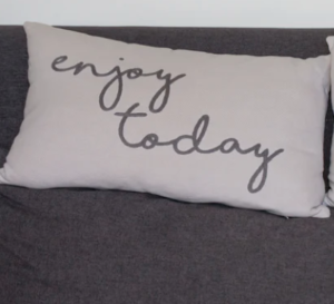 Blue Bird Day and Enjoy Today Pillow